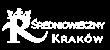 Średniowieczny Kraków - Kolejna witryna oparta na WordPressie